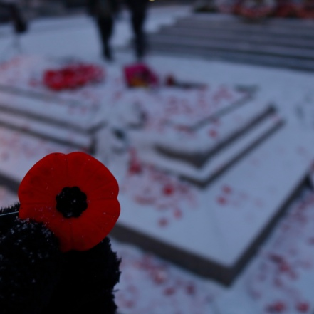 remembrance day 2019 - 1